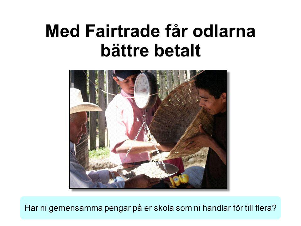 Med Fairtrade får odlarna