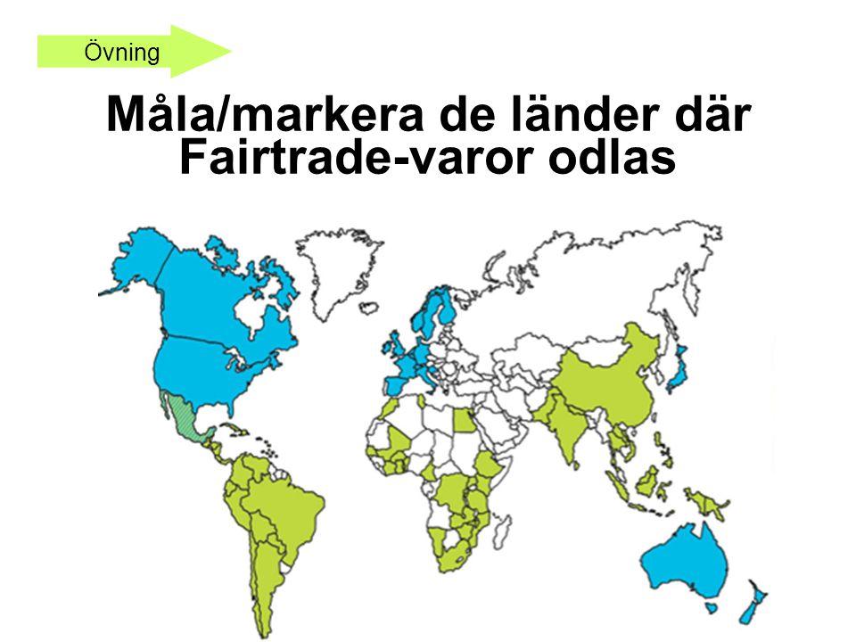 Måla/markera de länder där Fairtrade-varor odlas