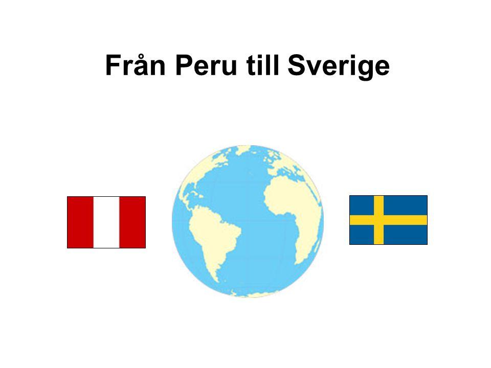 Från Peru till Sverige 23