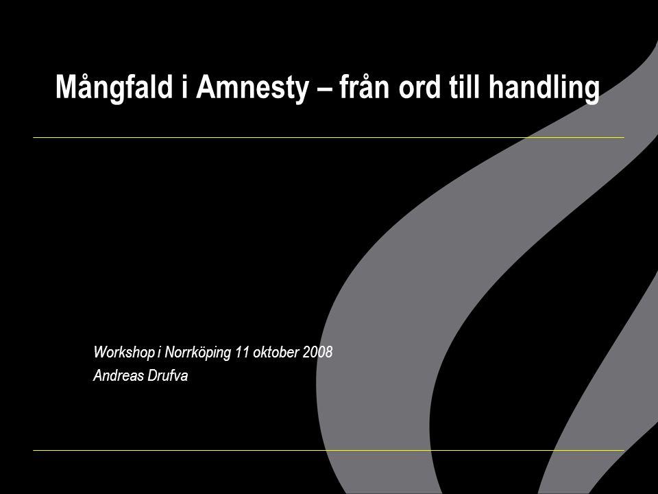 Mångfald i Amnesty – från ord till handling
