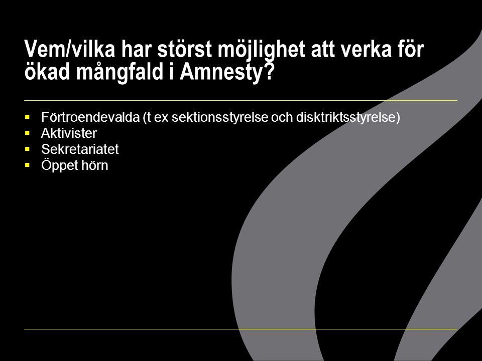 Vem/vilka har störst möjlighet att verka för ökad mångfald i Amnesty