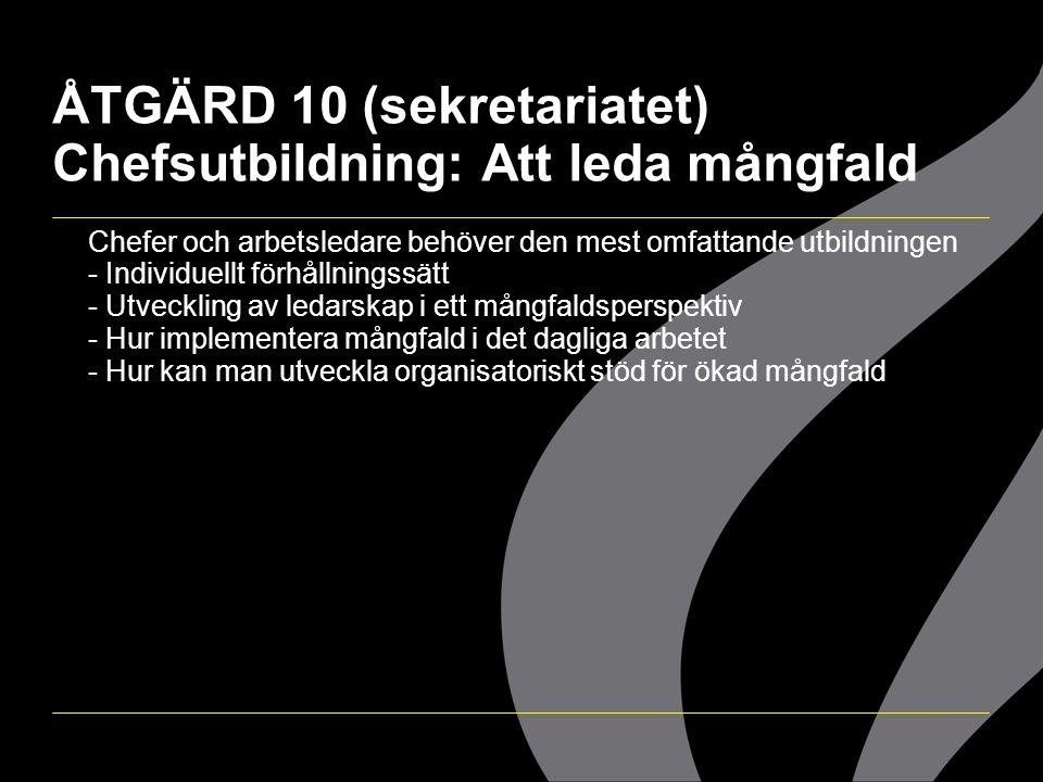 ÅTGÄRD 10 (sekretariatet) Chefsutbildning: Att leda mångfald