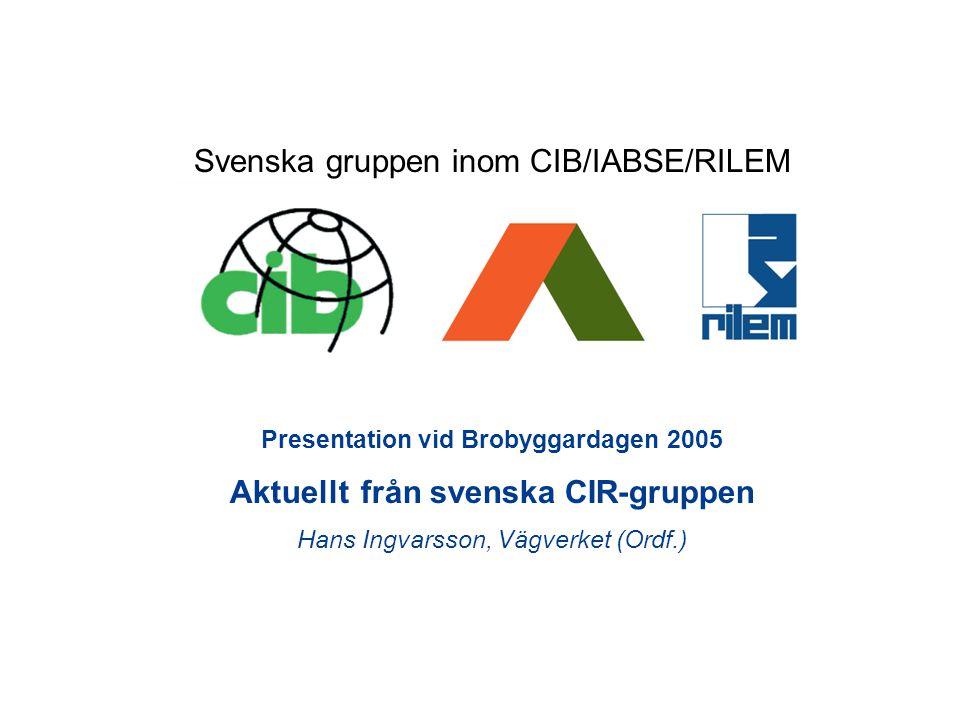 Presentation vid Brobyggardagen 2005