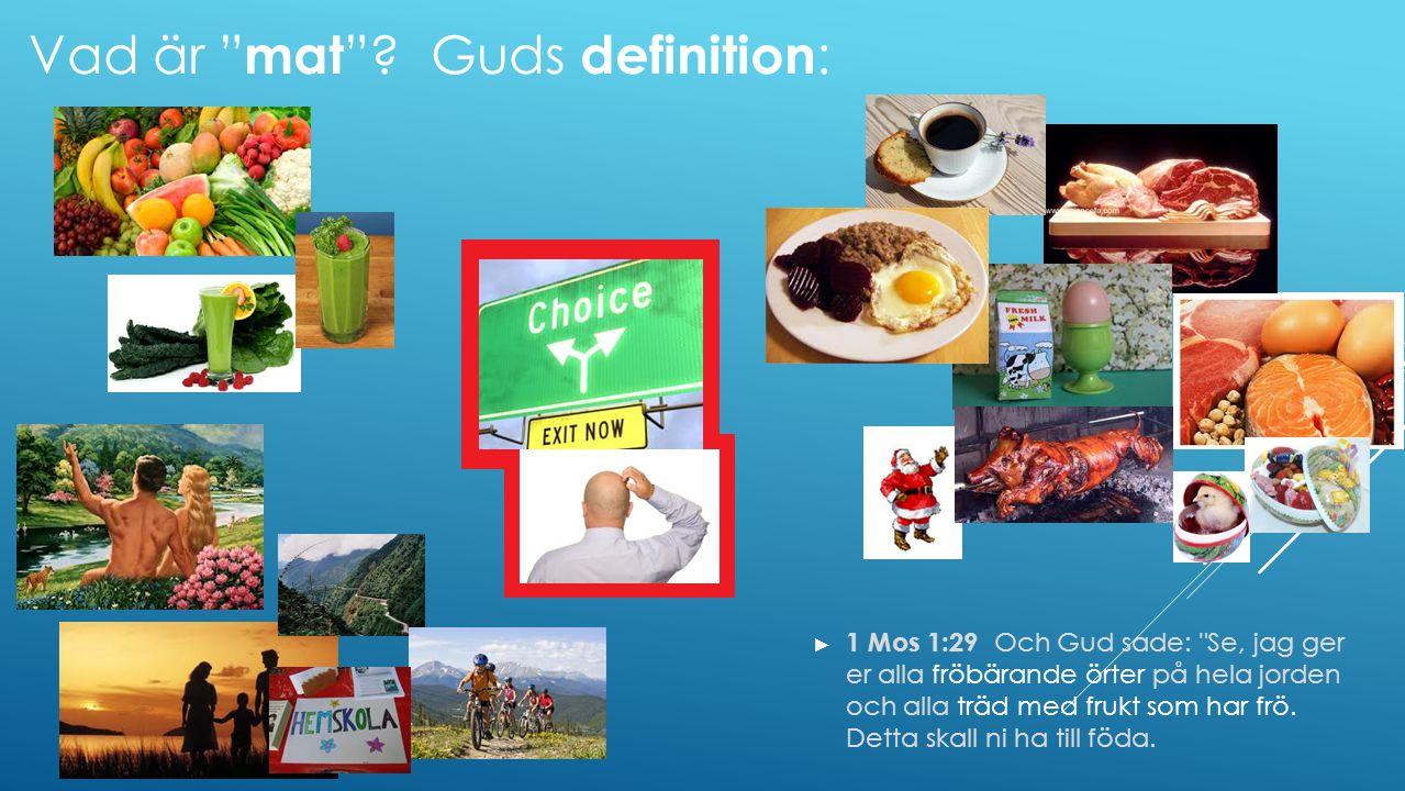 Vad är mat Guds definition:
