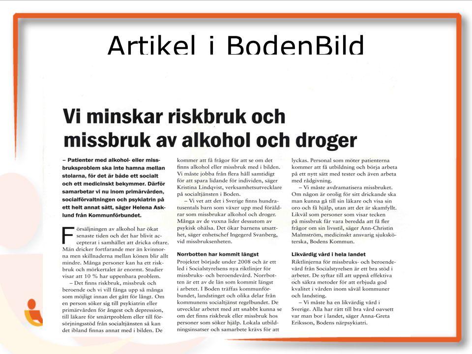 Artikel i BodenBild