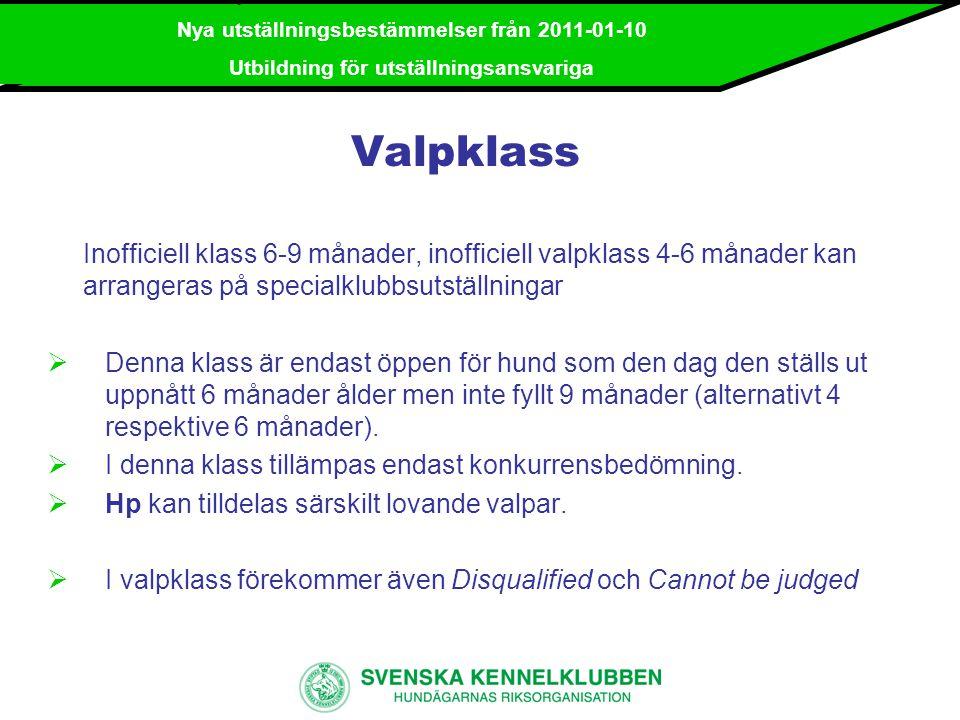 2 mars 2008 / Utbildning av ringsekreterare WDS
