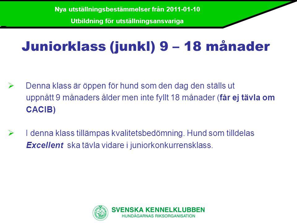 Juniorklass (junkl) 9 – 18 månader