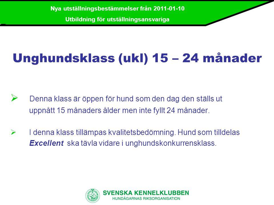 Unghundsklass (ukl) 15 – 24 månader