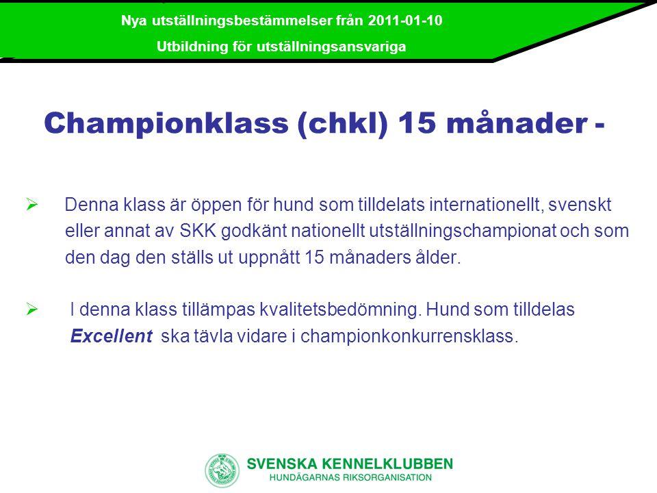 Championklass (chkl) 15 månader -