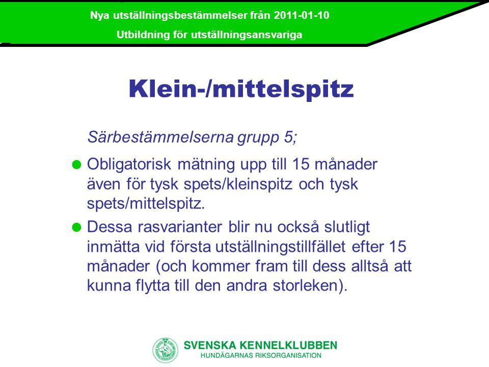 Klein-/mittelspitz Särbestämmelserna grupp 5;