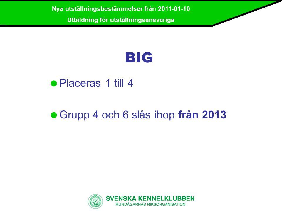 BIG Placeras 1 till 4 Grupp 4 och 6 slås ihop från 2013