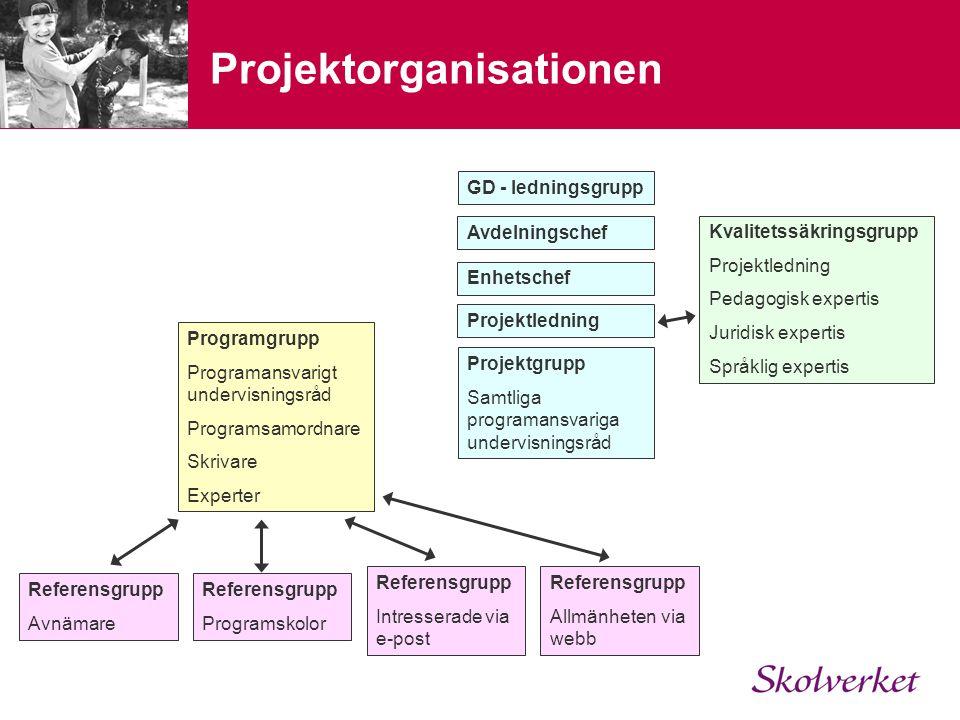 Projektorganisationen