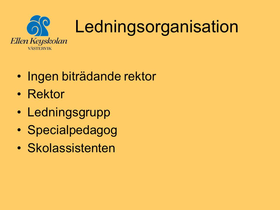 Ledningsorganisation