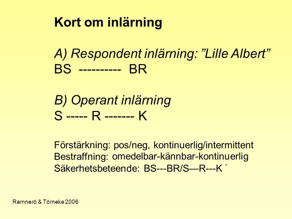 A) Respondent inlärning: Lille Albert BS ---------- BR