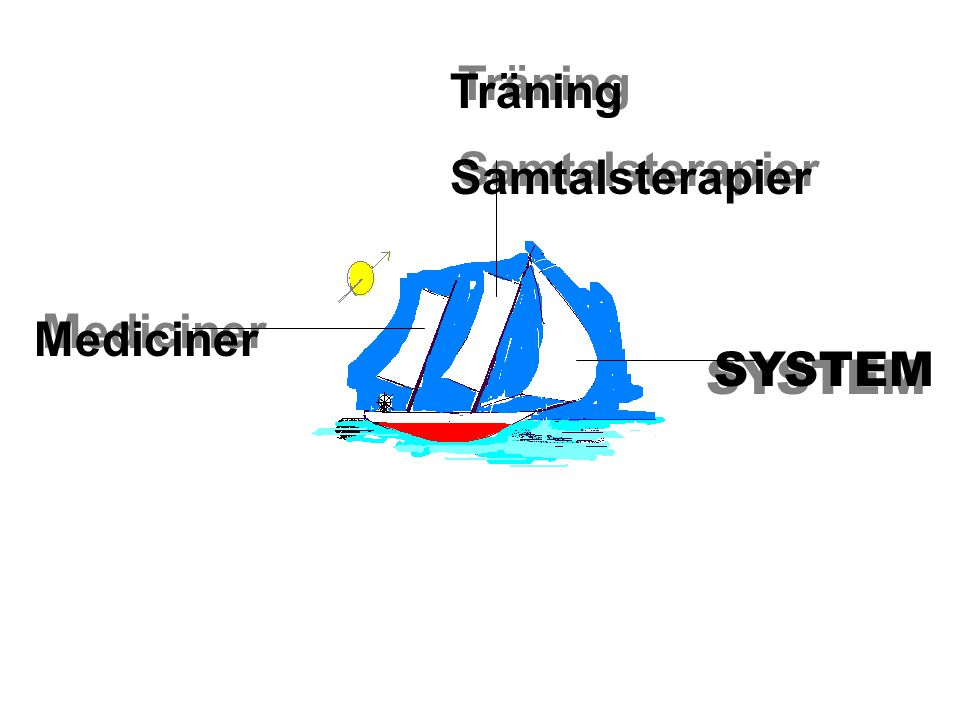 Träning Samtalsterapier Mediciner SYSTEM