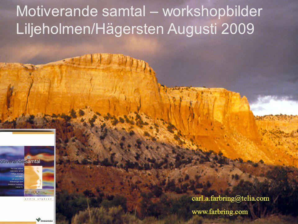Motiverande samtal – workshopbilder Liljeholmen/Hägersten Augusti 2009