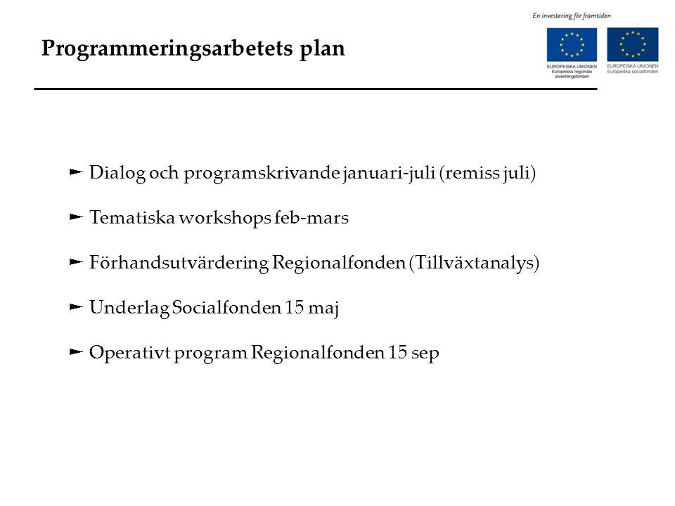 Programmeringsarbetets plan