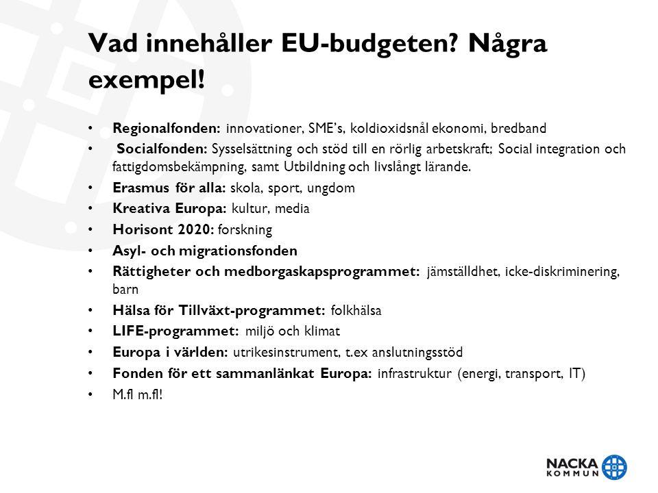 Vad innehåller EU-budgeten Några exempel!