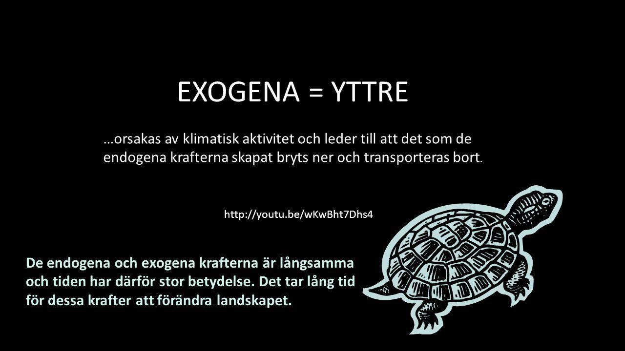 EXOGENA = YTTRE …orsakas av klimatisk aktivitet och leder till att det som de endogena krafterna skapat bryts ner och transporteras bort.