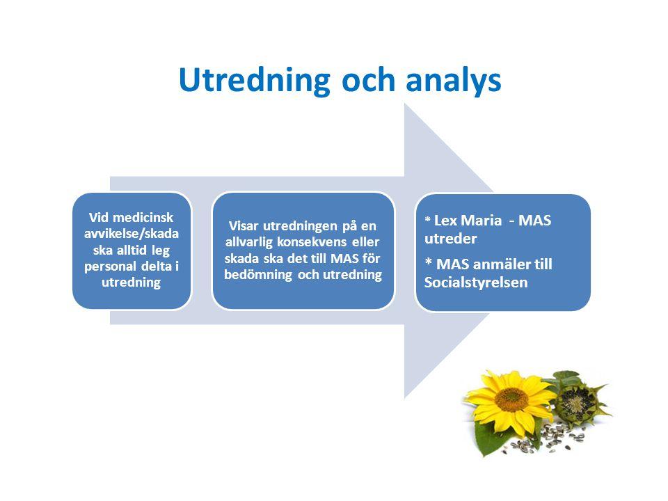 Utredning och analys * MAS anmäler till Socialstyrelsen