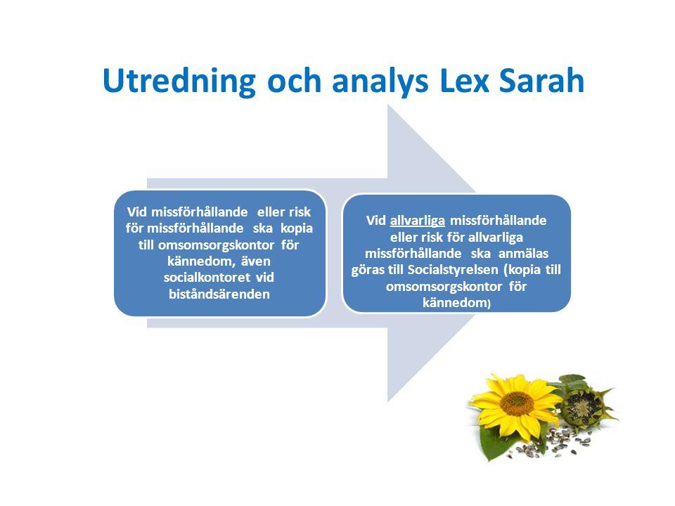 Utredning och analys Lex Sarah