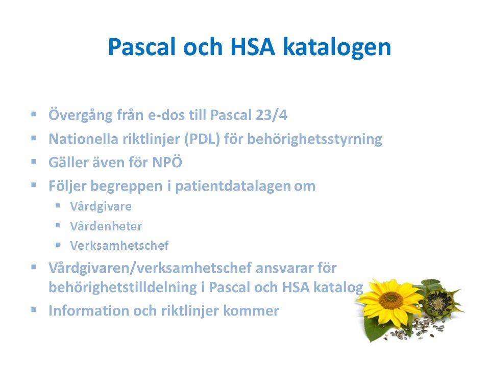 Pascal och HSA katalogen