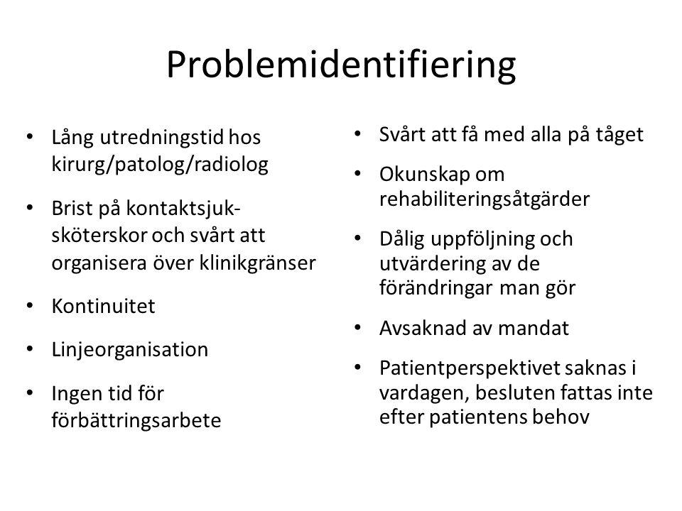 Problemidentifiering