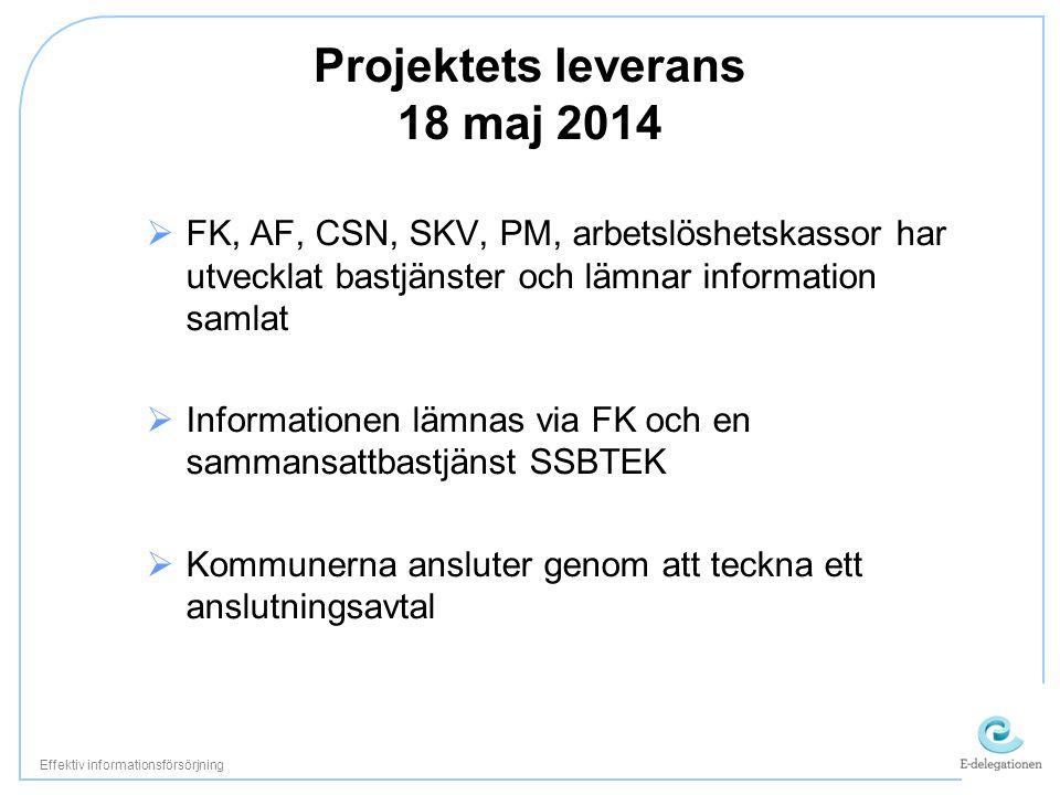 Projektets leverans 18 maj 2014