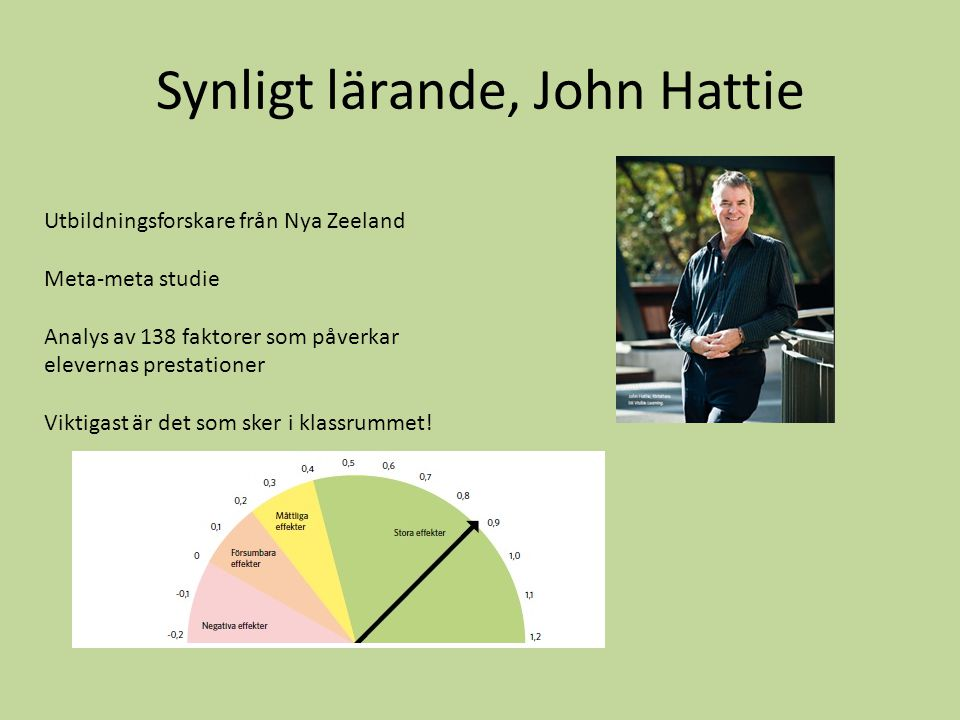 Synligt lärande, John Hattie