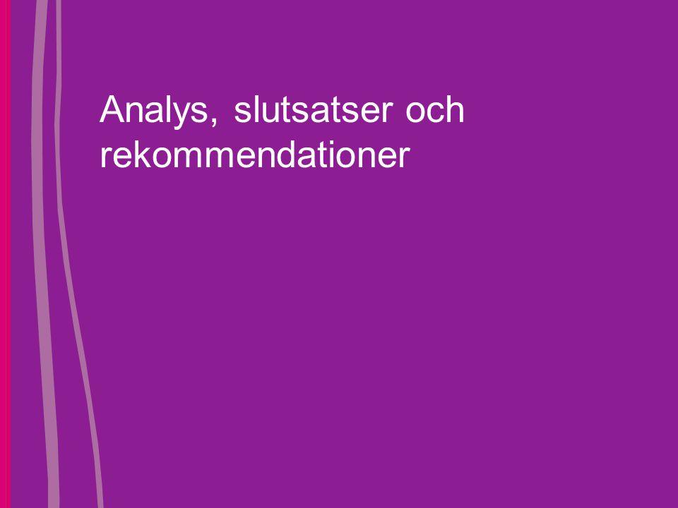 Analys, slutsatser och rekommendationer