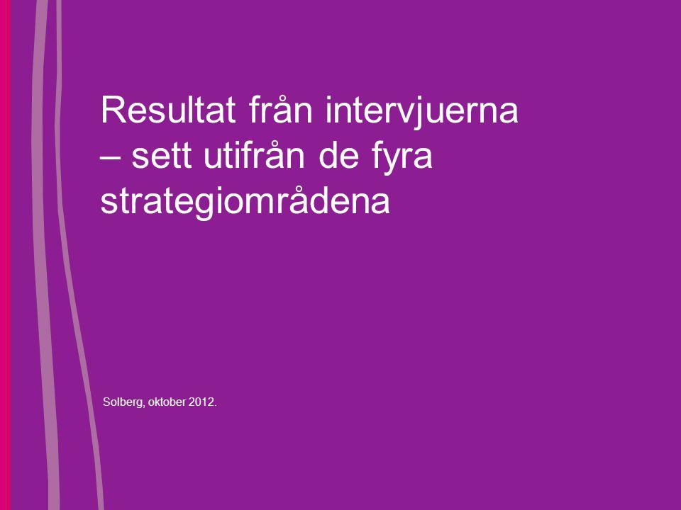 Resultat från intervjuerna – sett utifrån de fyra strategiområdena