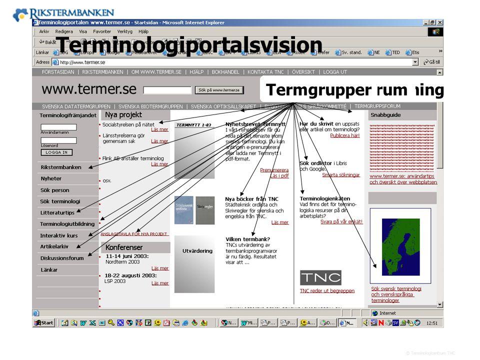 Terminologiportalsvision