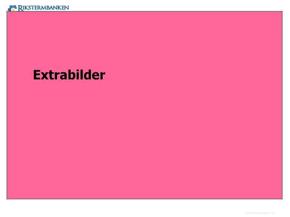Extrabilder 17.41