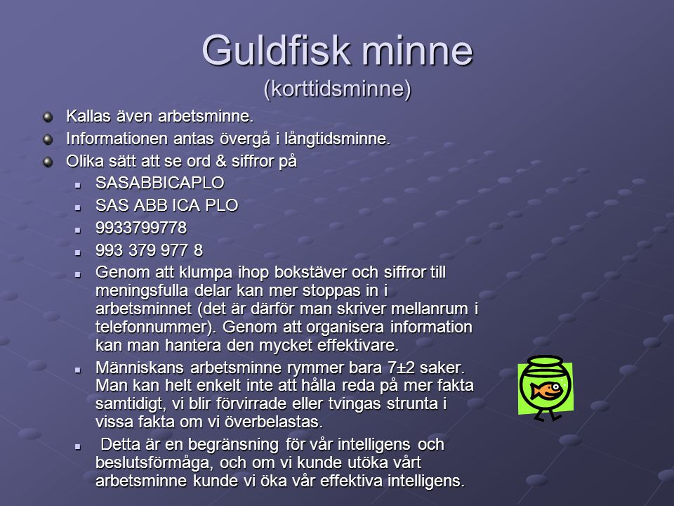 Guldfisk minne (korttidsminne)