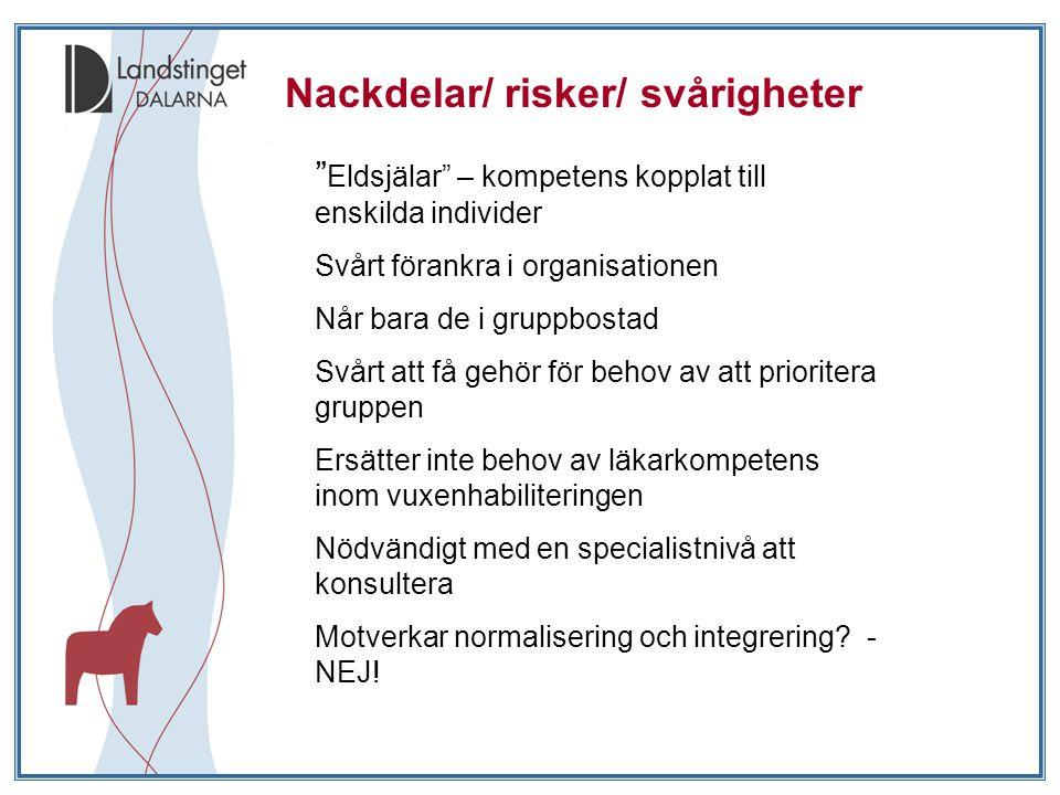 Nackdelar/ risker/ svårigheter