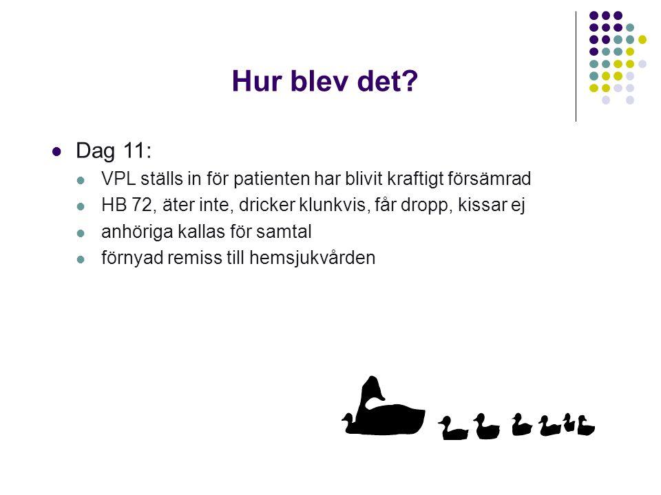 Hur blev det Dag 11: VPL ställs in för patienten har blivit kraftigt försämrad. HB 72, äter inte, dricker klunkvis, får dropp, kissar ej.