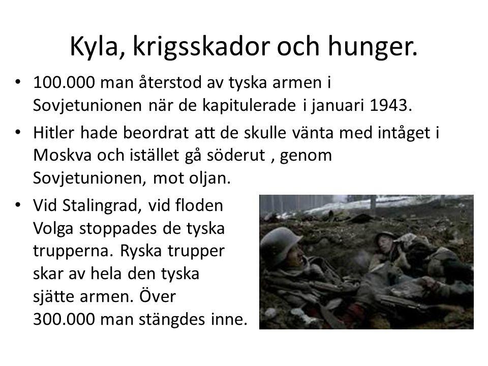 Kyla, krigsskador och hunger.