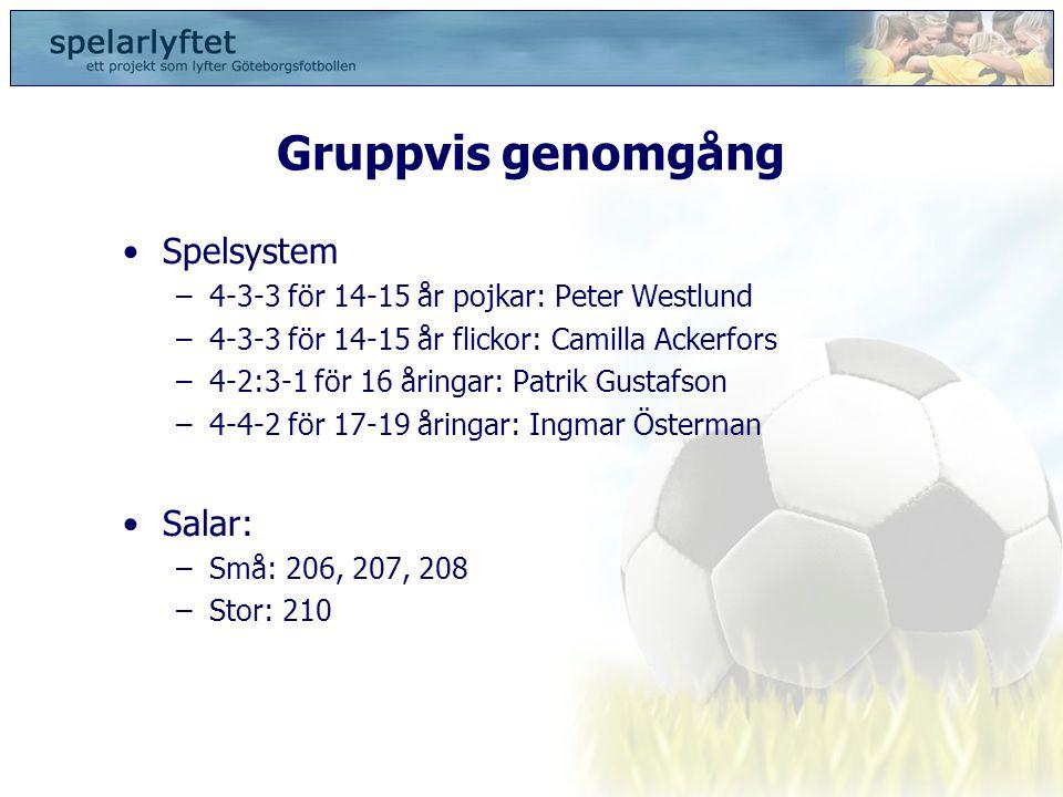 Gruppvis genomgång Spelsystem Salar: