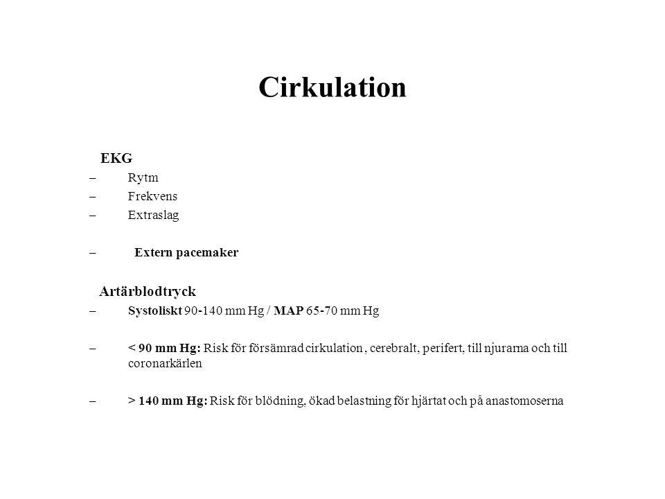 Cirkulation EKG Rytm Frekvens Extraslag Extern pacemaker