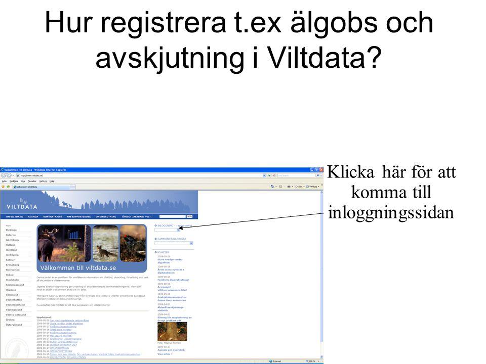 Hur registrera t.ex älgobs och avskjutning i Viltdata