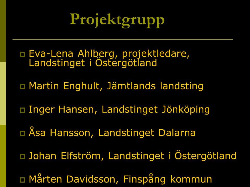Projektgrupp Eva-Lena Ahlberg, projektledare, Landstinget i Östergötland. Martin Enghult, Jämtlands landsting.