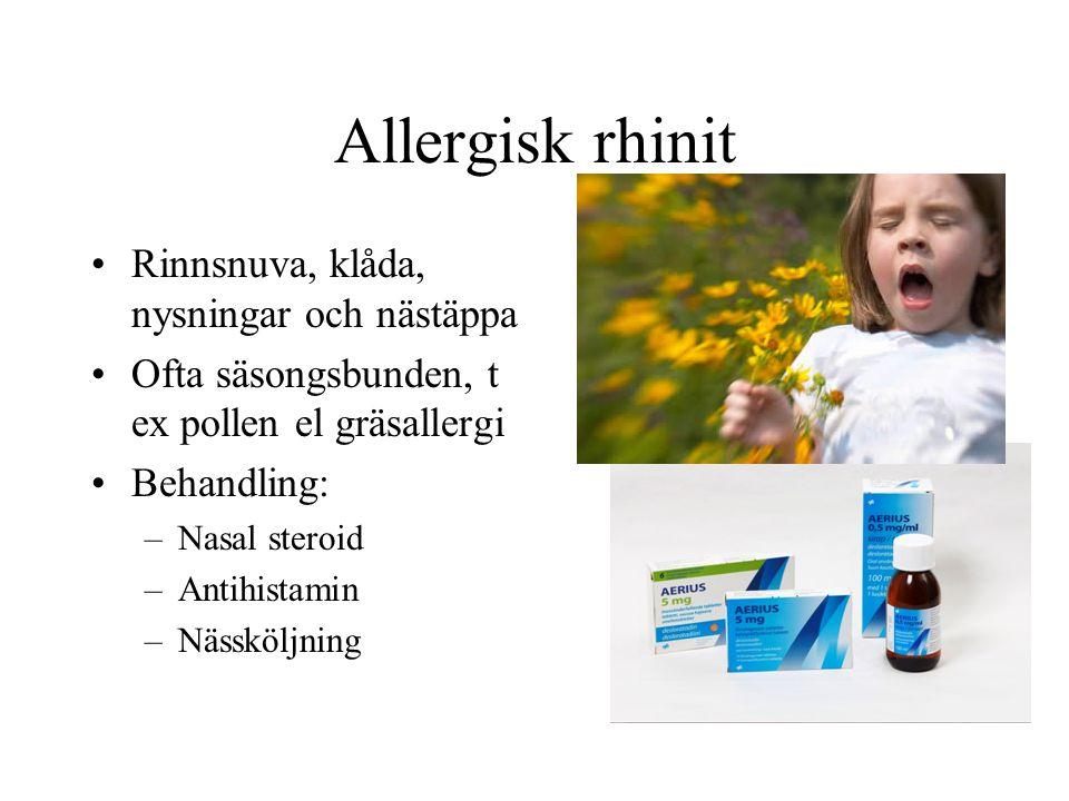 Allergisk rhinit Rinnsnuva, klåda, nysningar och nästäppa