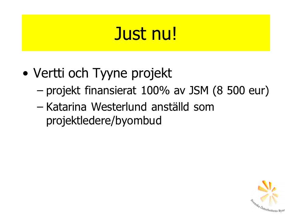 Just nu! Vertti och Tyyne projekt