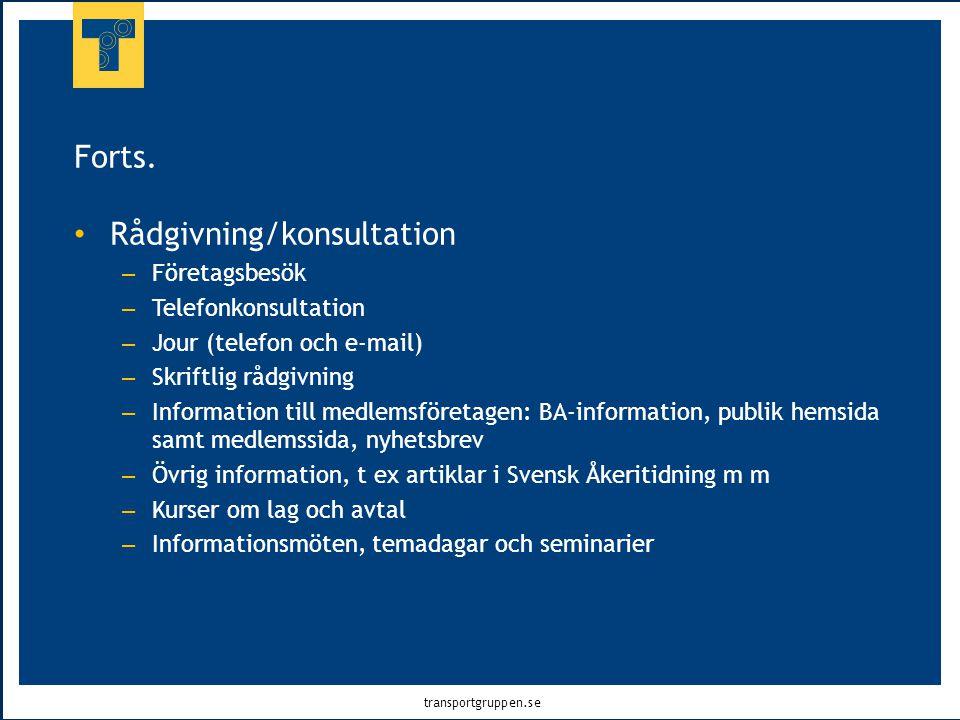 Rådgivning/konsultation