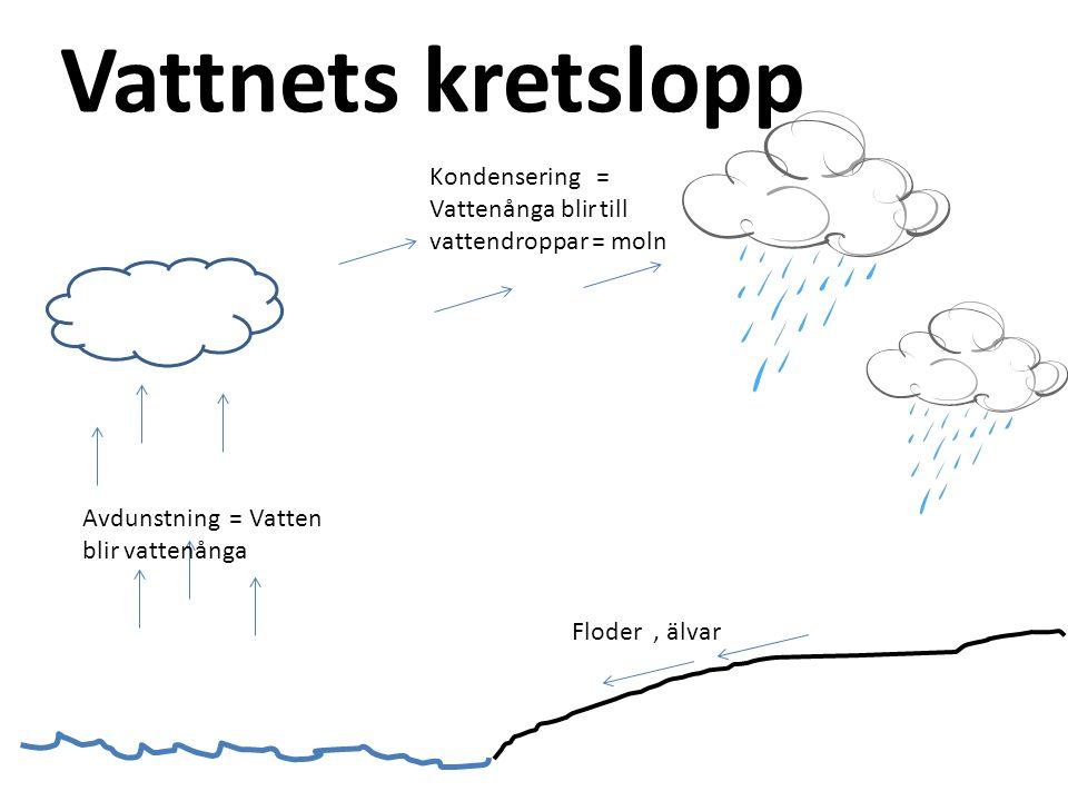 Vattnets kretslopp Kondensering = Vattenånga blir till vattendroppar = moln. Avdunstning = Vatten blir vattenånga.