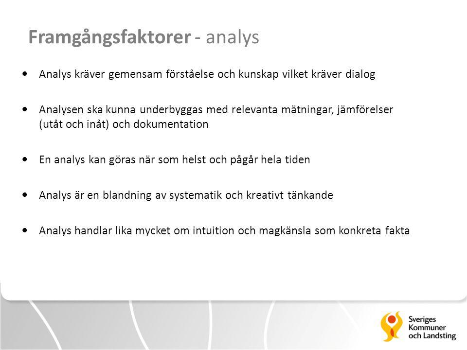 Framgångsfaktorer - analys