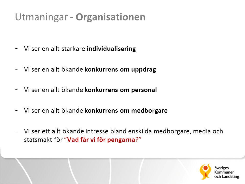 Utmaningar - Organisationen
