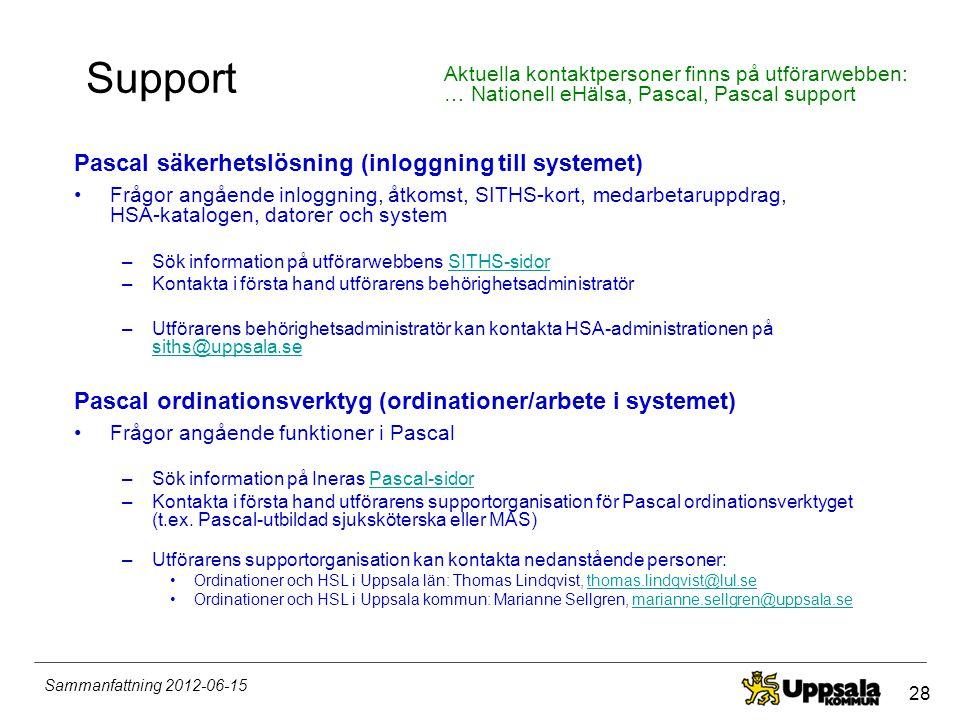 Support Pascal säkerhetslösning (inloggning till systemet)