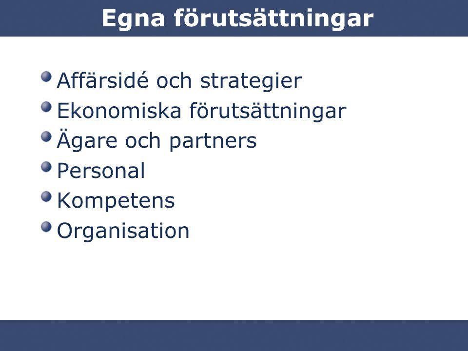 Egna förutsättningar Affärsidé och strategier