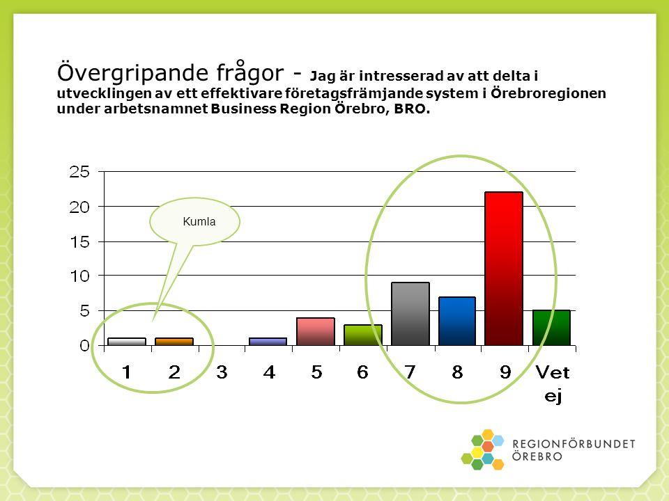 Övergripande frågor - Jag är intresserad av att delta i utvecklingen av ett effektivare företagsfrämjande system i Örebroregionen under arbetsnamnet Business Region Örebro, BRO.